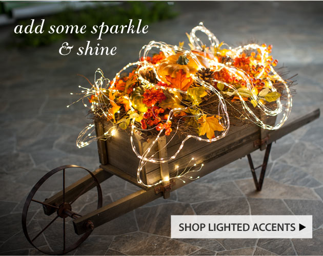 Add some sparkle & shine! Shop lighted accents